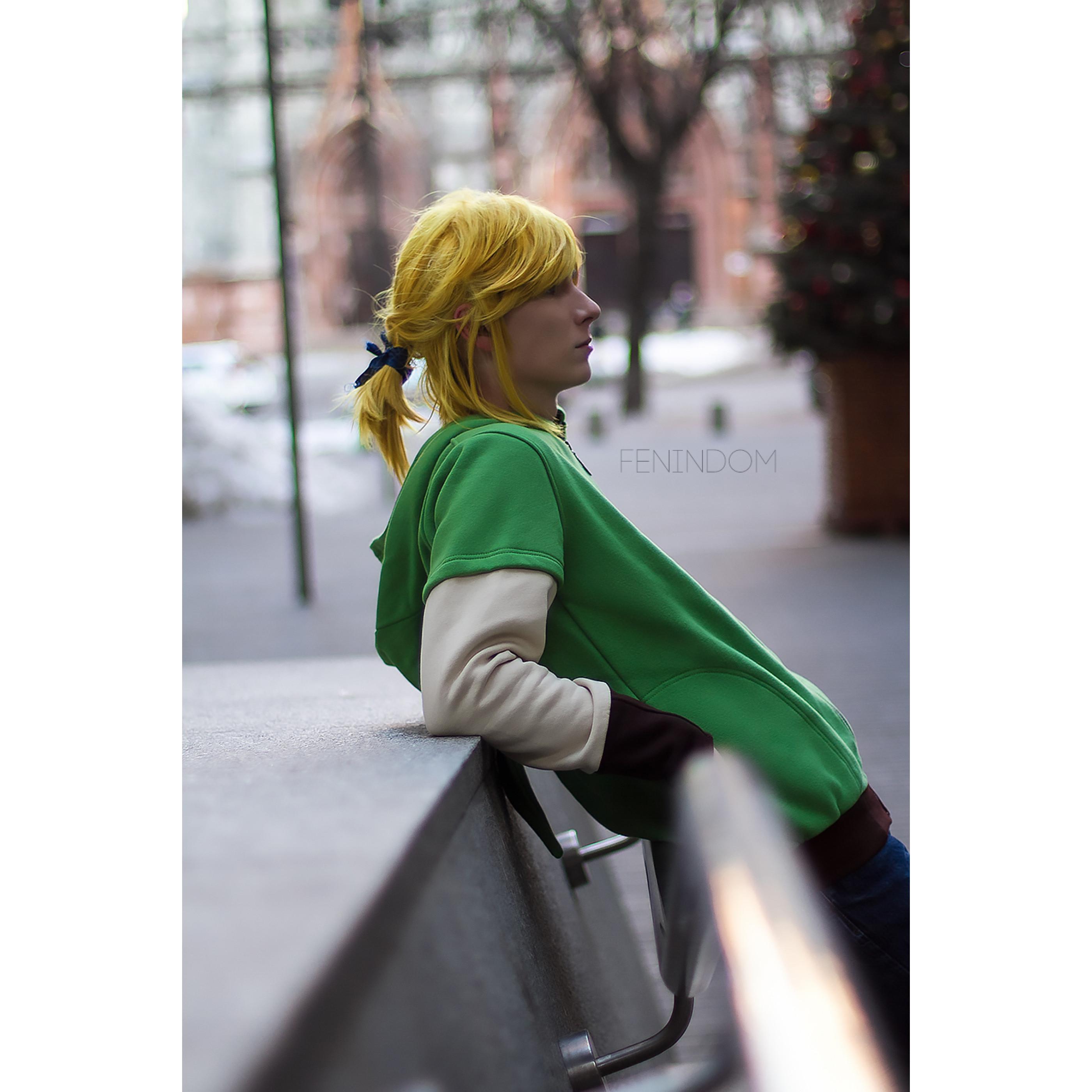 FENINDOM Legend of Zelda - Link Hoodie